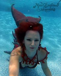 Rhode Island Underwater Mermaid Performer For Hire
